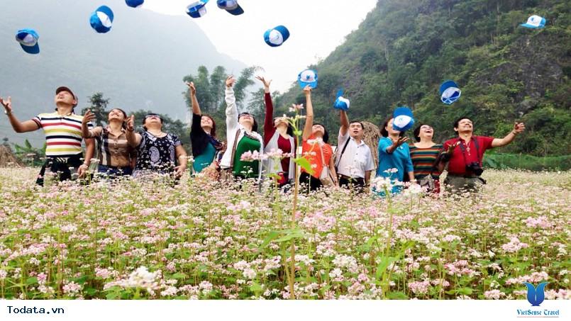 Du Lịch Hà Giang Mùa Hoa Tam Giác Mạch 3 Ngày - Ảnh 2