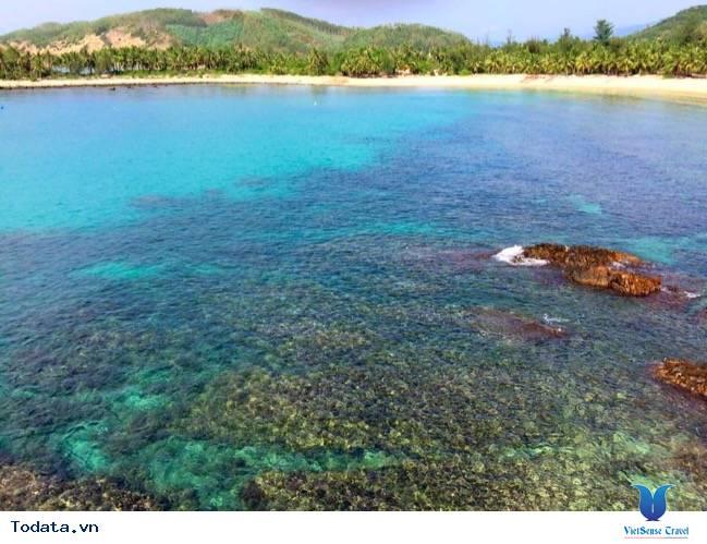 Đến Phú Yên ngắm bãi Rạng – bãi Ôm, nơi vẻ đẹp tự nhiên còn nguyên vẹn