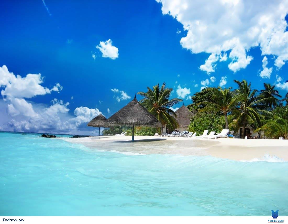 những điều nên biết khi đi du lịch côn đảo