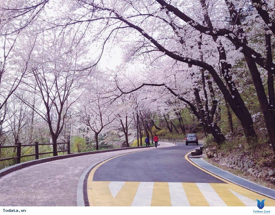 Thăm quan một nơi tuyệt vời tại Hàn Quốc
