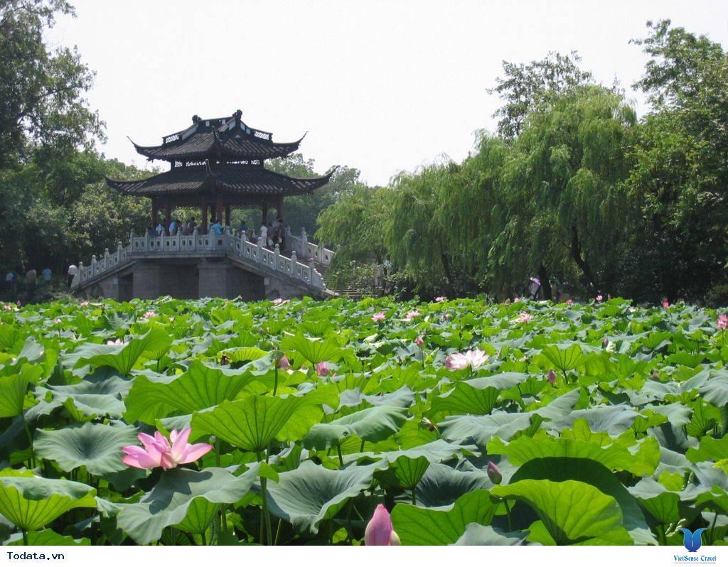 Thượng Hải - Hàng Châu - Tô Châu - Bắc Kinh 7 ngày 6 đêm,thuong hai  hang chau  to chau  bac kinh 7 ngay 6 dem