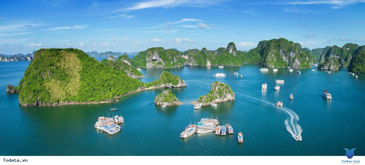 Tour Du Lịch Hạ Long 1 Ngày: Khám Phá Thành Phố Biển