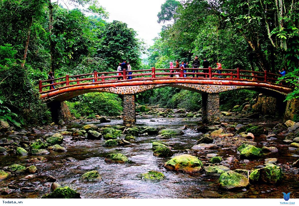 Tour Du Lịch Vườn Quốc Gia Xuân Sơn - Đảo Ngọc Xanh - 2 Ngày