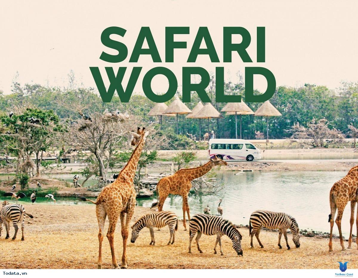 Thư viện ảnh Công viên Safari World