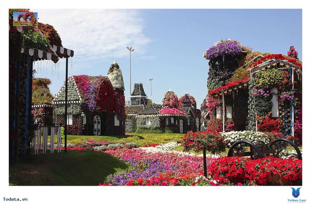 Thư viện ảnh Miracle Garden