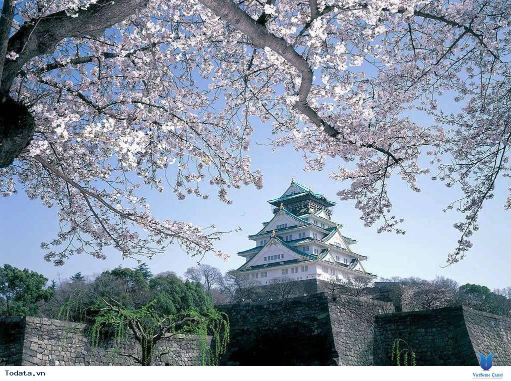 Thư viện ảnh Osaka