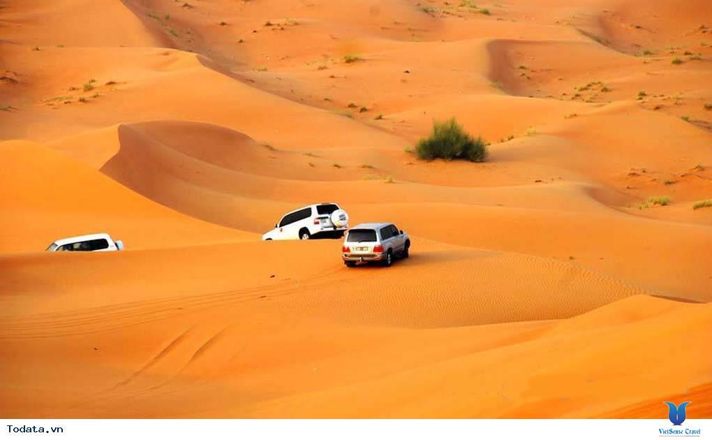 Thư viện ảnh Sa Mạc Safari