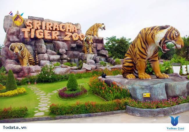 Thư viện ảnh Sriracha Tiger Zoo