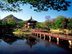 4 lưu ý quan trọng trước khi đi du lịch Hàn Quốc