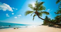 Báo Tây khuyên du khách vì sao nên đi du lịch Phú Quốc