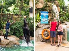 Cùng Xuôi Dòng Trên River Safari Singapore