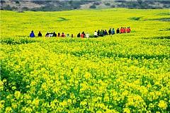 Đảo Jeju thiên đường tình yêu ở hàn quốc