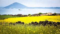Khám phá nét đẹp của những hòn đảo đáng sống nhất Hàn Quốc