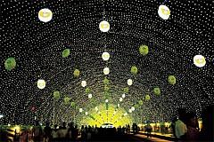 Lễ hội đom đóm Muju đẹp lung linh, huyền ảo