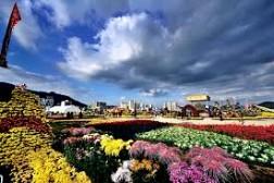 Changwon- ĐIểm Đến Không Thể Bỏ Qua