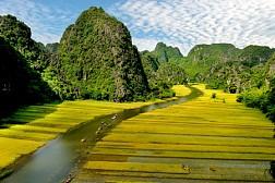 """Du lịch Tam Cốc - Bích Động vào """"mùa vàng"""""""