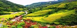 Toàn Cảnh Thung Lũng Mường Hoa Sapa