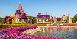 Khám Phá Khu Vườn Hoa Kỳ Diệu Tại Dubai