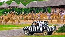 Khám phá thế giới tự nhiên từ công viên Safari World
