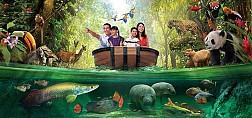 Khu sinh thái đa dạng trong River Safari