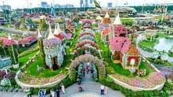 Miracle Garden- Viên Ngọc Trai Của Sa Mạc