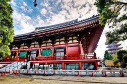 Mùa Thu Ở Đền Asakusa Kannon