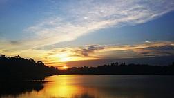 Ngắm hoàng hôn MacRitchie Nature Trail & Reservoir Park