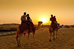 Sa Mạc Safari_ Điểm Du Lịch Không Thể Thiếu Ở Dubai