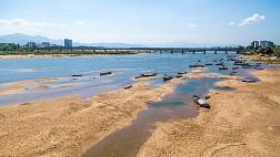 Sông Trà Khúc tại Lý Sơn đẹp đến vậy ư?