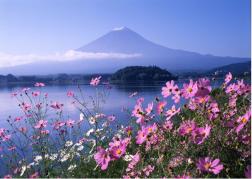 Thiên Đường Lá Đỏ Nhật Bản 5 Ngày