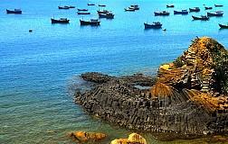 Tour Phú Yên - Tuy Hòa - Gềnh Đá Đĩa: Khám Phá Xứ Hoa Vàng Cỏ Xanh