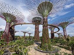 vườn thực vật garden by the bay, khu vườn độc đáo tại Singapore