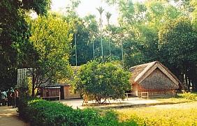 làng Sen