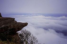 Pha Luông