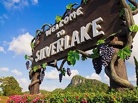 Vườn Nho Silverlake