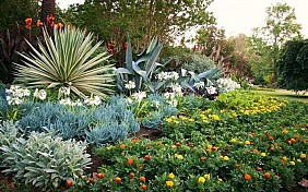 Vườn Thực Vật Botanic Garden