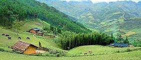 Yên Minh