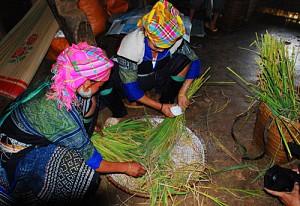 Đến Mù Cang Chải dự lễ cúng cơm mới của người Mông