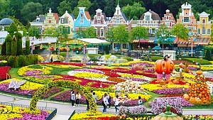 Ghé thăm Everland Hàn Quốc