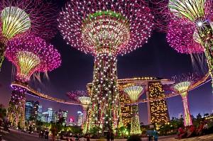 Gardens By The Bay- Khu Vườn Nhân Tạo Khổng Lồ Của Singapore