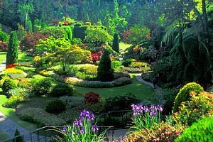 Vườn địa đàng Butchart Gardens xinh đẹp