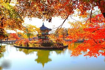Hà Nội - Seoul -  Jeju - Nami Ngày 11,18,và 25/10