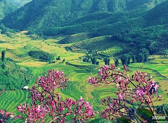Tour du lịch Sơn La - Điện Biên