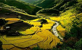 Hà Nội - Mộc Châu - Sơn La - Mù Cang Chải