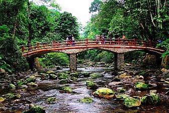 Tour Hà Nội - Vườn Quốc Gia Xuân Sơn - Đảo Ngọc Xanh
