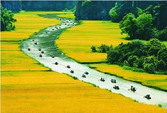 Tour Hoa Lư - Tam Cốc - 1 Ngày