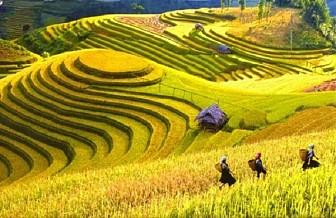 Tour Hà Nội - Sapa - Hàm Rồng - Fansipan - Thác Bạc  - Lao Chải Tả Van