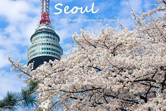 Seoul - Nami - Everland - N Tower 5n4d