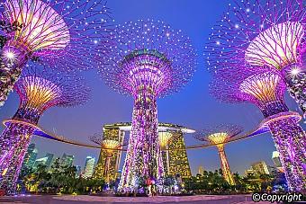 Tp.Hồ Chí Minh - Singapore - Malaysia