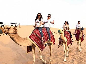 Dubai - Abu Dhabi Khởi Hành Hè 2018